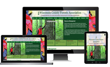 responsive-website-design-rhinelander-wi